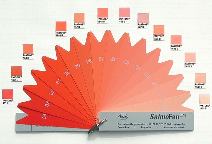edward tufte forum: what color is your salmon, flamingo, leaf