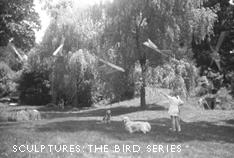 Sculptures: The Bird Series