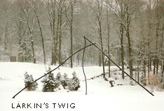 Larkin's Twig